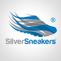 silver sneakers shoe.png